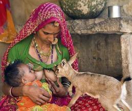 un acte généreux, spirituelle, traditionelle, ancestrale, telle la lionne nourrissant le singe égaré